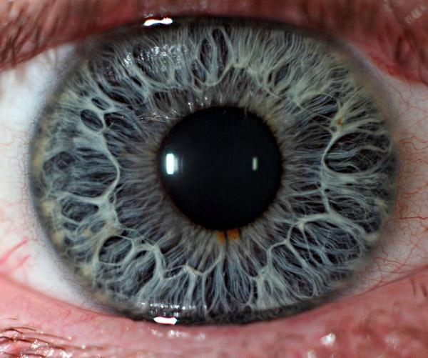 Kompjuter u ljudsko oko